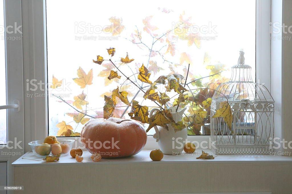 Autumn still-life with a pumpkin stock photo