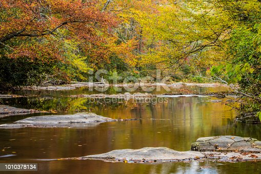 Autumn Colors reflected in the water of a stream
