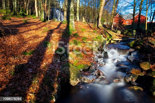 Creek in autumn forest swedish cultural landscape photographed with long exposure in pursuit to catch the dreaminess of flowing water