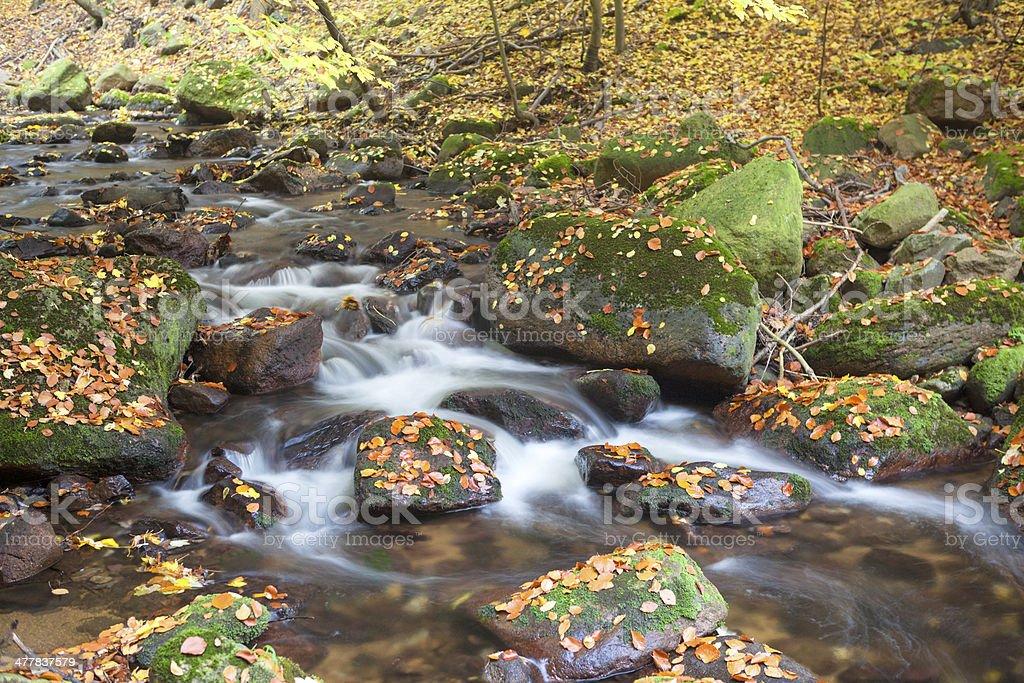 autumn stream royalty-free stock photo