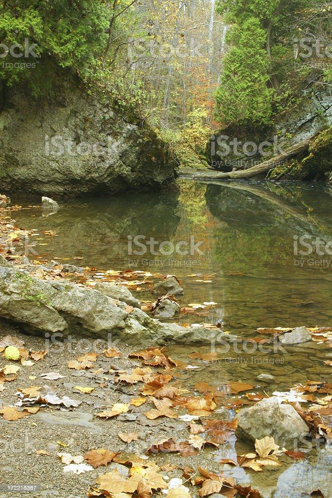 Autumn Stream Through The Rocks, Ravine royalty-free stock photo