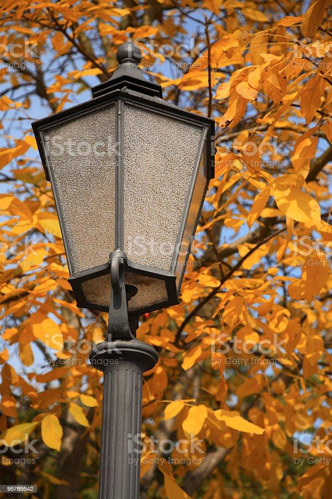 Autumn Street Lamp royalty-free stock photo