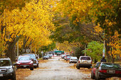 """""""Photo of an street, with Autumn colours, Car Parking.Please see some similar pictures from my portfolio:"""""""