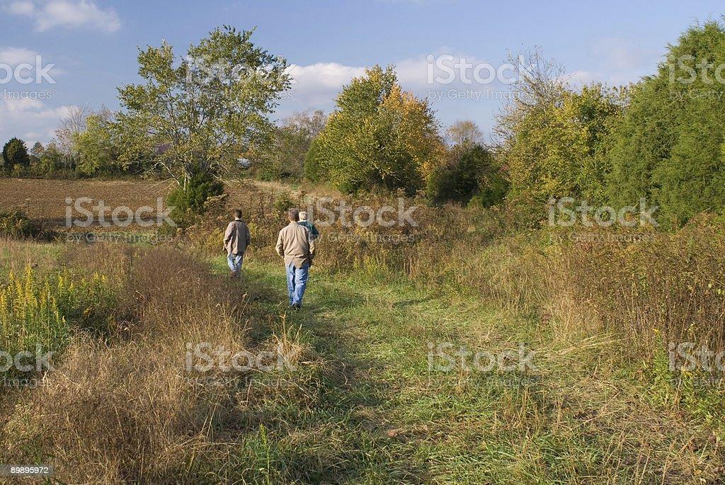 Осенний ходьбы Стоковые фото Стоковая фотография