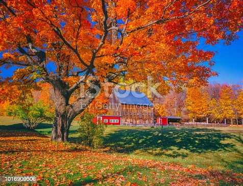 Country farm; American culture; building; dynamic, charming country scene; New England country side  scene, brilliant fall color