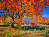 Autumn country side with rolling hills in Vermont with old weathered barn