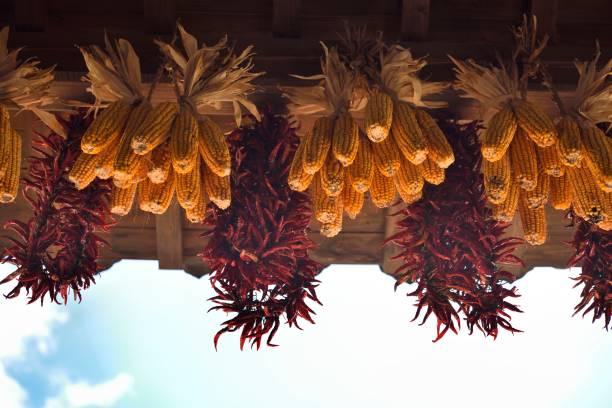 Herbstsonne scheint auf die Ernte – Foto