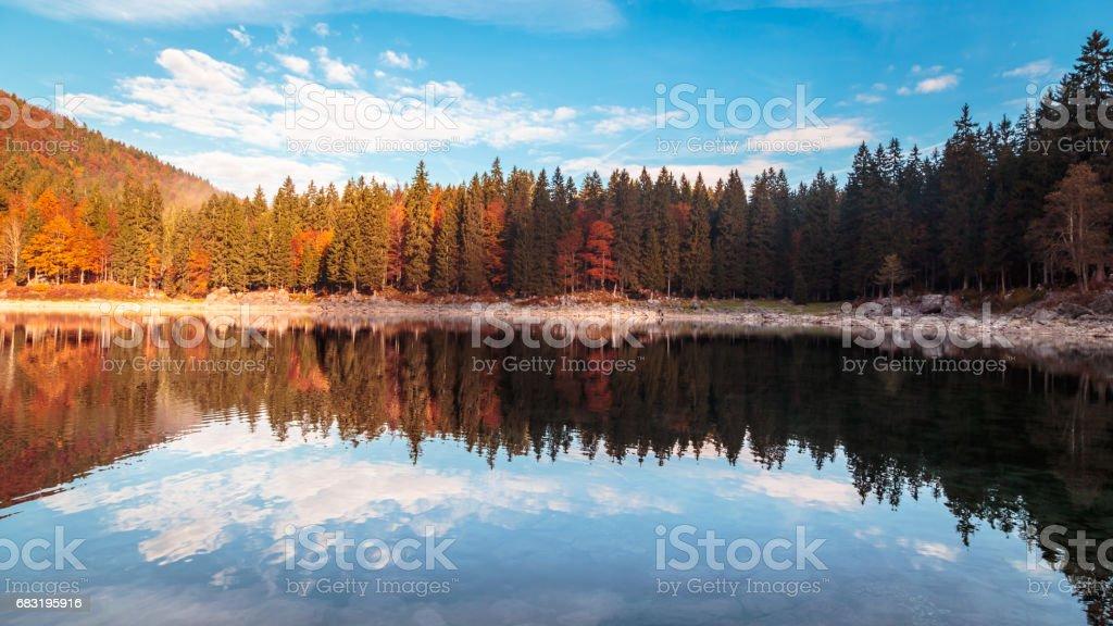 autumn sunrise at the alpine lake 免版稅 stock photo