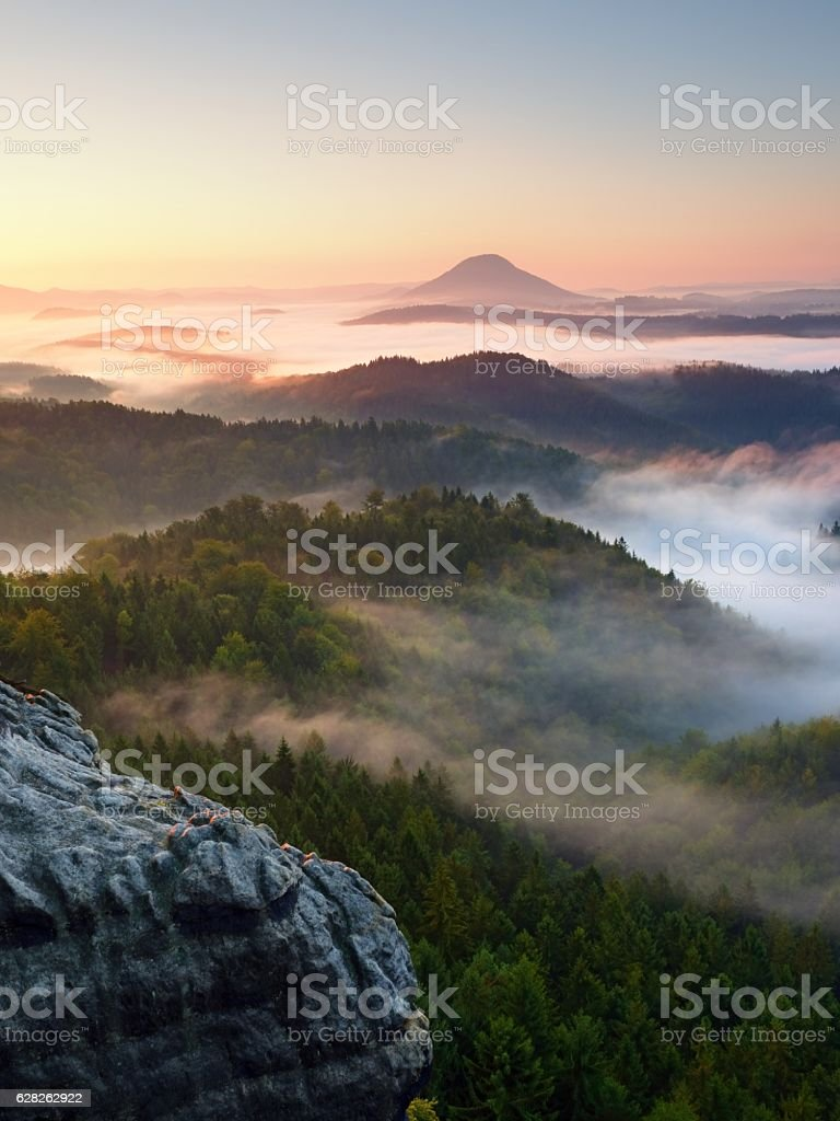 Autumn sunrise forest,  fall colorful valley full of dense mist stock photo