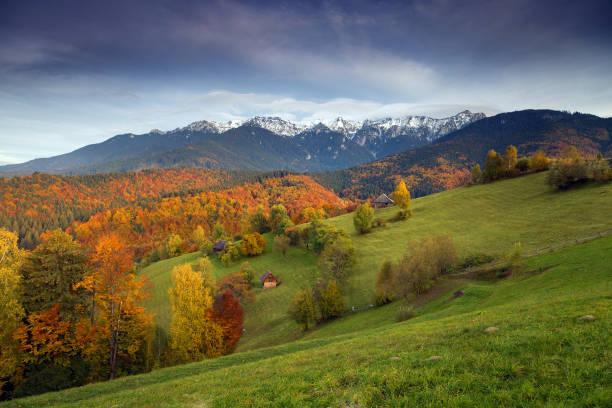 가 일출 풍경 - 카르파티아 산맥 뉴스 사진 이미지