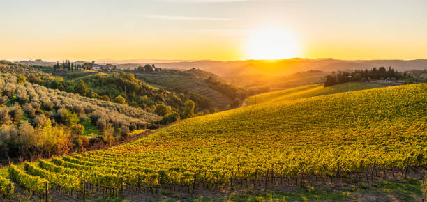 Autumn sunset in the hills of Tuscany stock photo