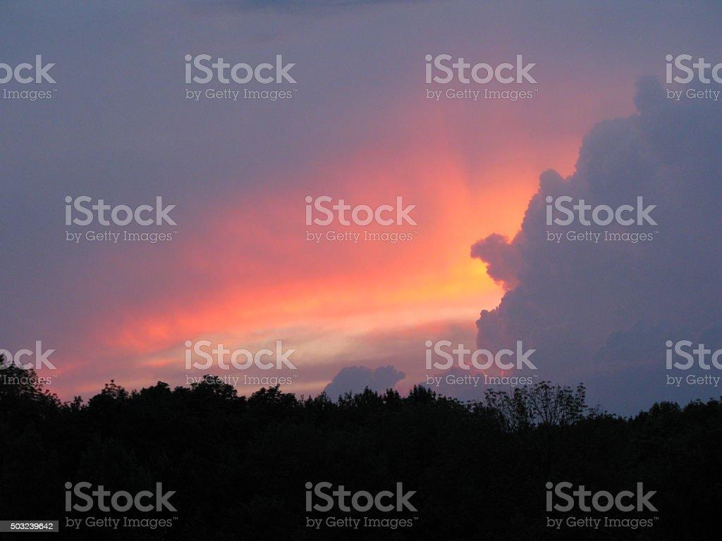 Autumn Sunset over Trees stock photo