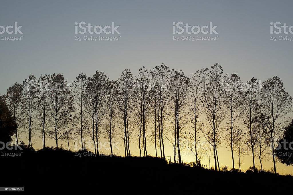 Autumn sunset royalty-free stock photo
