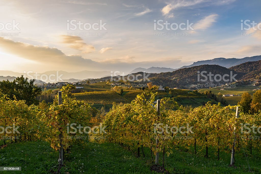 Tramonto autunnale stock photo
