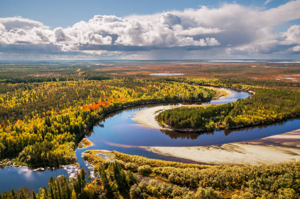 Autumn, Taiga, Western Siberia Top view Autumn, Taiga, Western Siberia, Tyumen Region, Khanty-Mansi Autonomous District (Upper view) taiga stock pictures, royalty-free photos & images