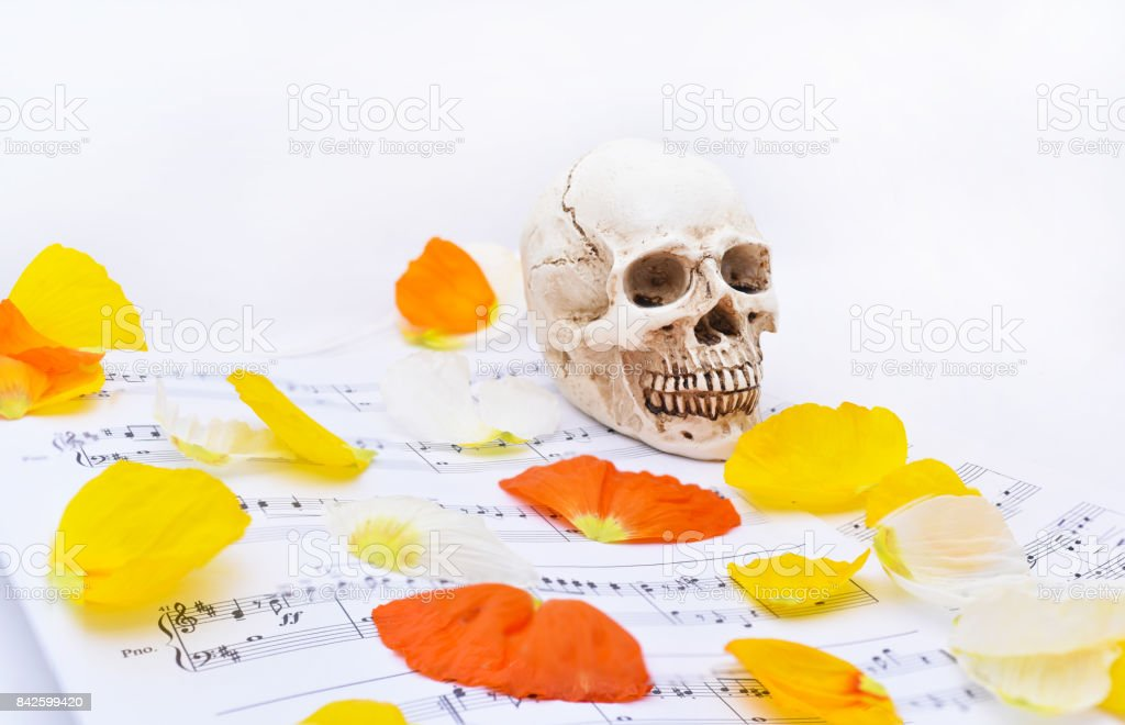 Autumn texture with white small skull. stock photo