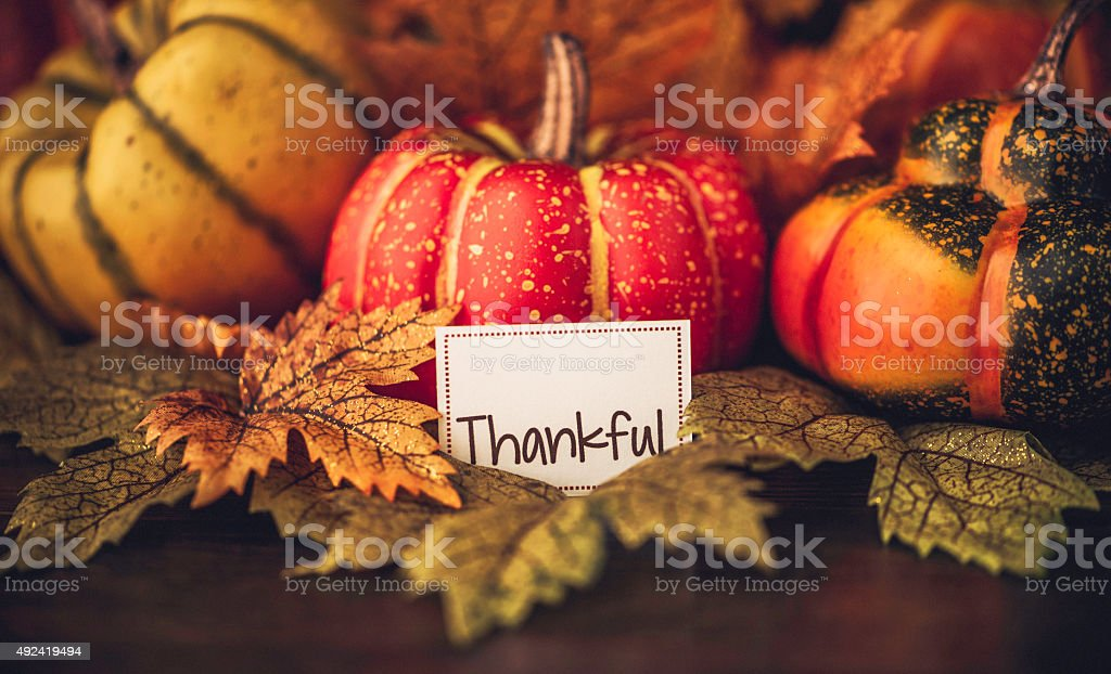 Autumn Thanksgiving arrangement with thankful message stock photo