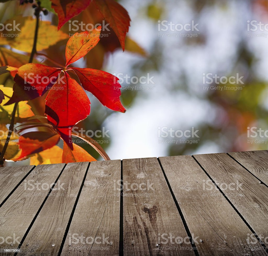 autumn theme and empty wooden deck table royalty-free stock photo