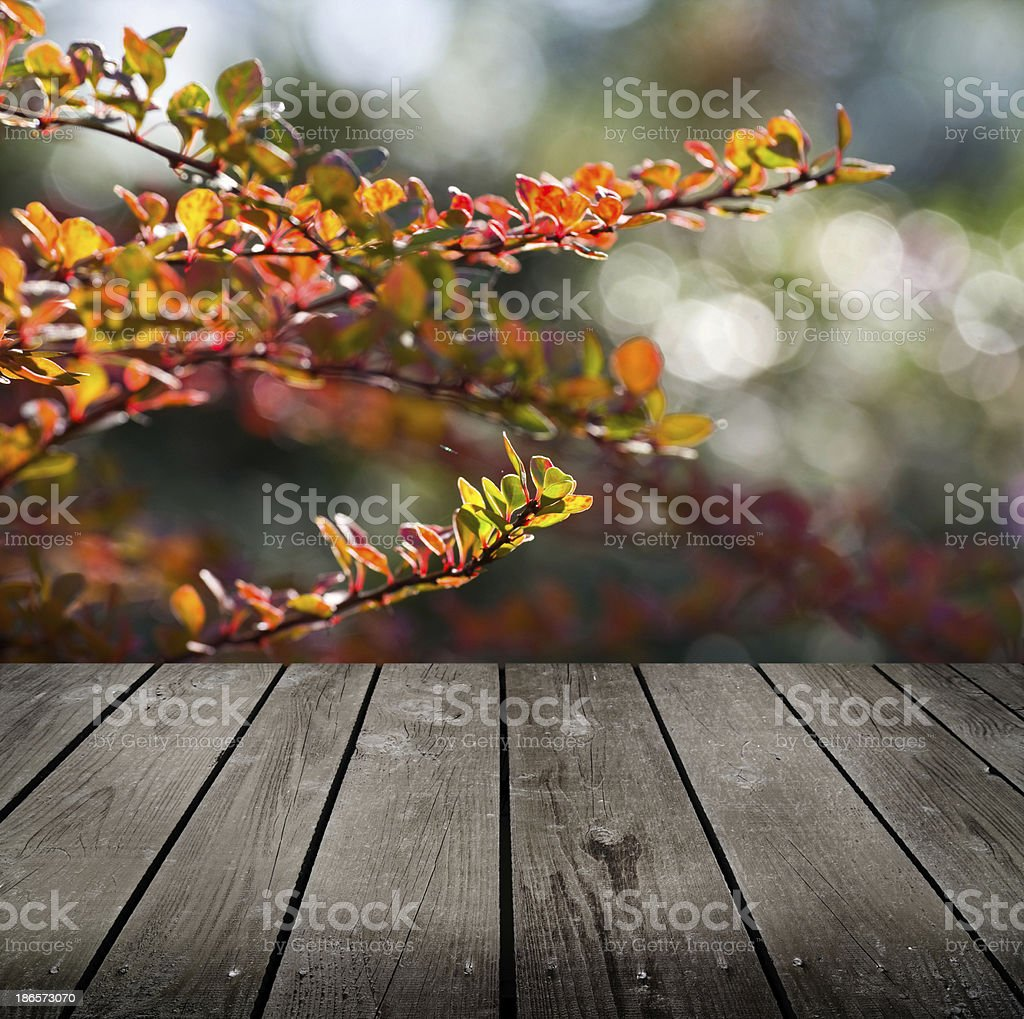 autumn theme and empty wooden deck table. Ready for product montage...
