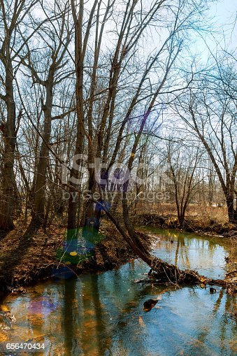 istock Autumn trees and cold river with clear water 656470434