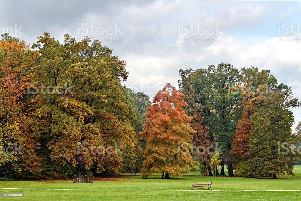 Autumn trees in Maksimir park, Zagreb, Croatia stock photo