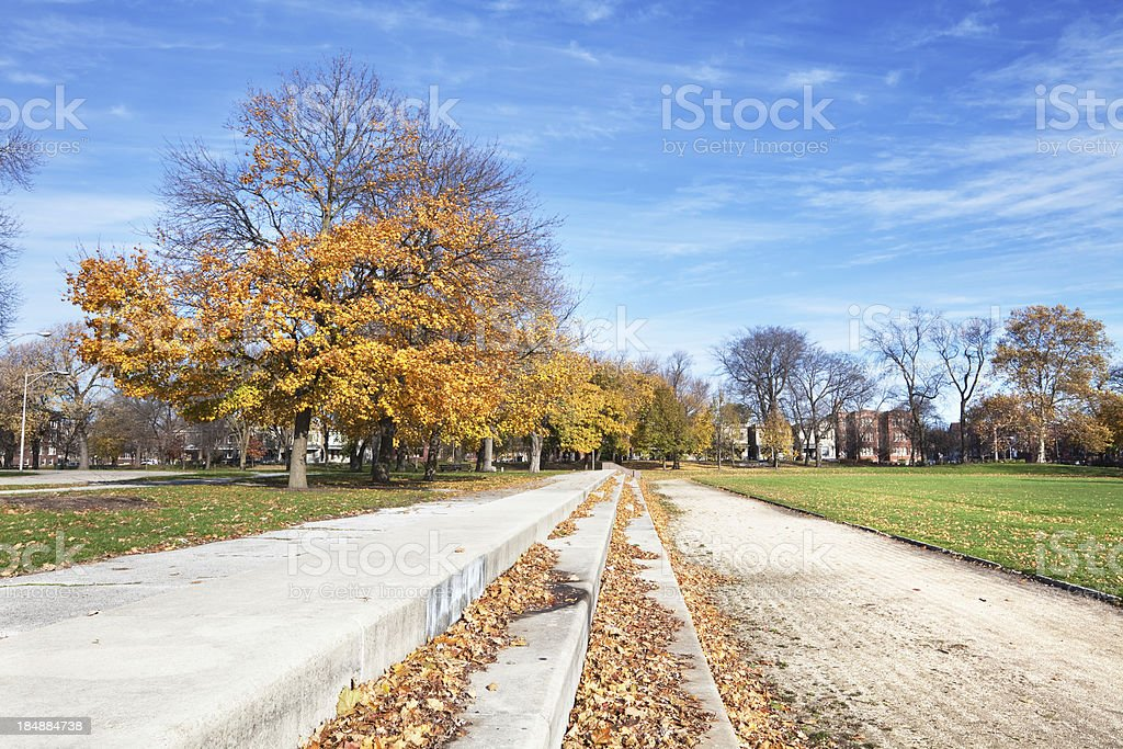 Autumn Trees in Ogden Park, West Englewood, Chicago royalty-free stock photo