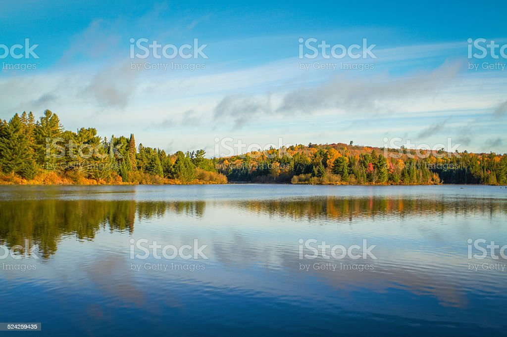 Autumn Trees On a Clear Lake stock photo