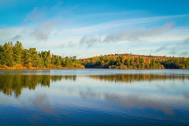Autumn Trees On a Clear Lake Autumn in Algonquin Park, Ontario, Canada. Tom Thomson Lake.  north stock pictures, royalty-free photos & images