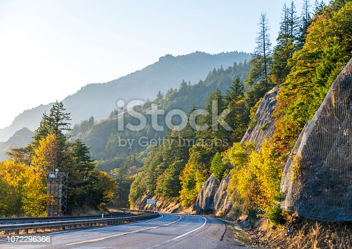 Autumn landscape with turning highway along the Columbia River with a yellow trees on one side and a rocky mountain covered with autumn trees on the other side of the road in Columbia River Gorge