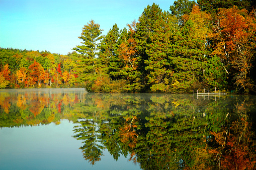 Autumn trees reflection on lakeshore clear lake