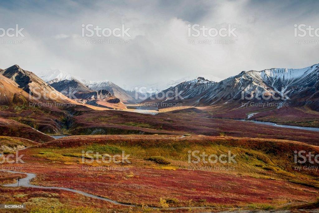 Autumn tundra in Alaska Range stock photo