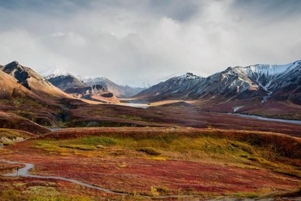 アラスカ山脈の秋のツンドラ - ツンドラ ストックフォトと画像