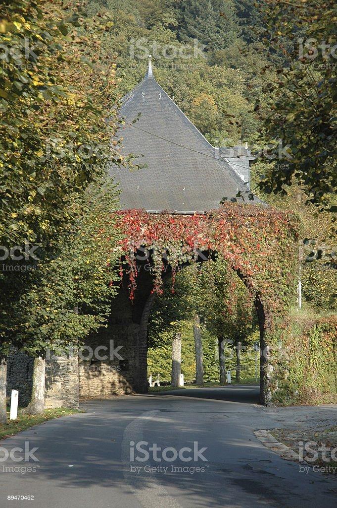 Herbst-tunnel Lizenzfreies stock-foto