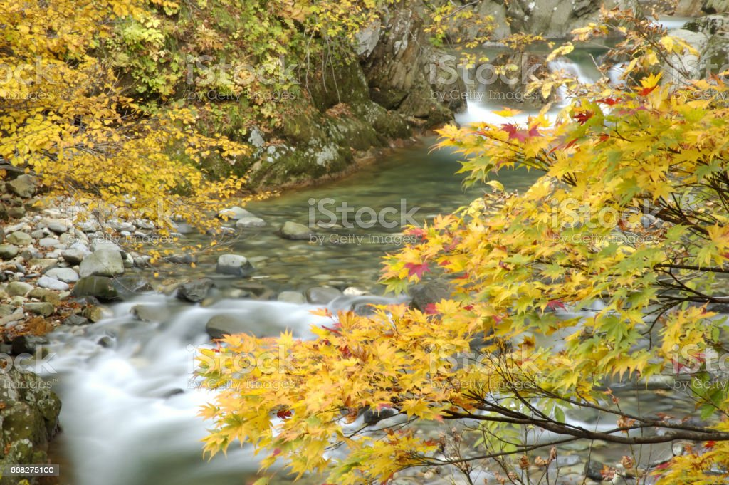 Autumn Valley stock photo