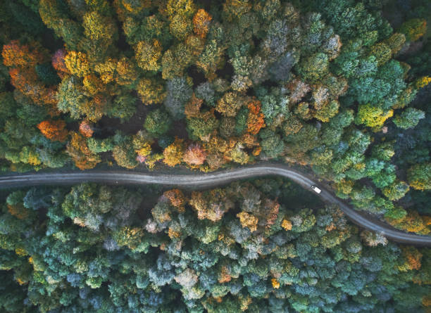 Herbstliche Ansicht von oben – Foto