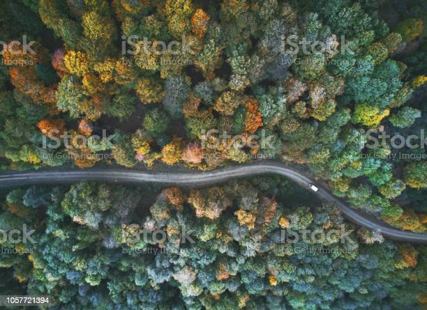 Photo of autumn view from above
