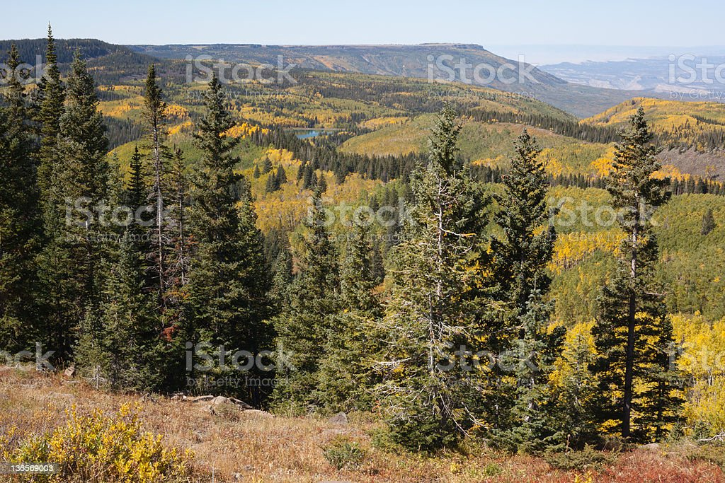Autumn View from Skyway Overlook on the Grand Mesa stock photo
