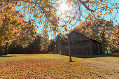 Autumn view of a garden and a wooden barn in the wood on a sunny day