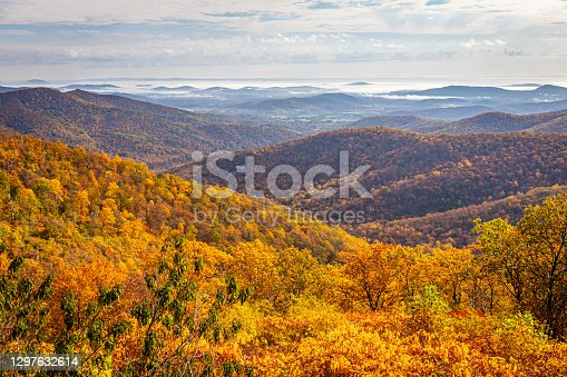 istock Autumn View of Shenandoah National Park 1297632614