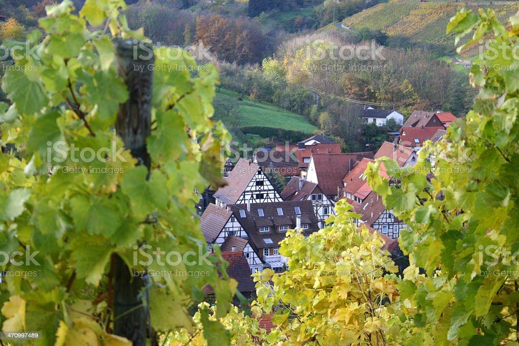 Autumn view over german wine village - 1 stock photo