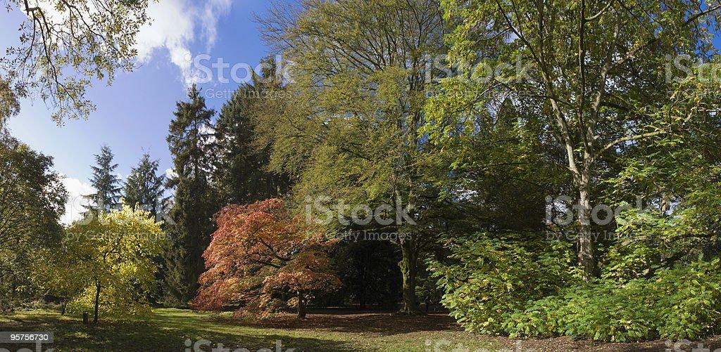 Autumn views royalty-free stock photo