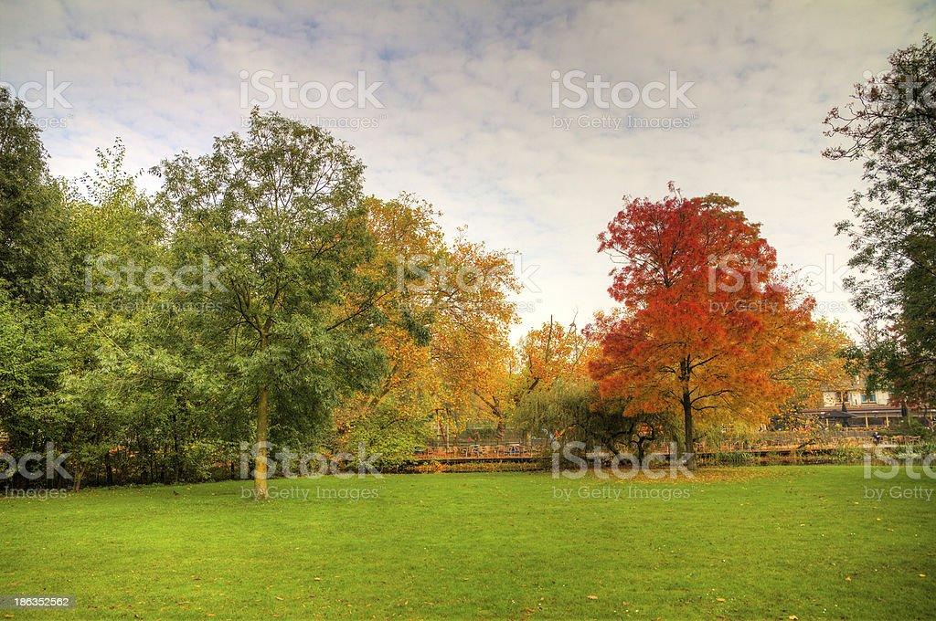 Autumn Vondelpark royalty-free stock photo