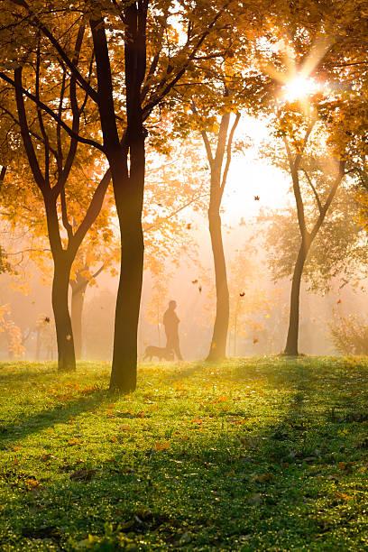 Autumn walk picture id518044377?b=1&k=6&m=518044377&s=612x612&w=0&h=aumuoru0hn6yvt3rzrw1e1bhwz sh1hbxnl2xndyi m=