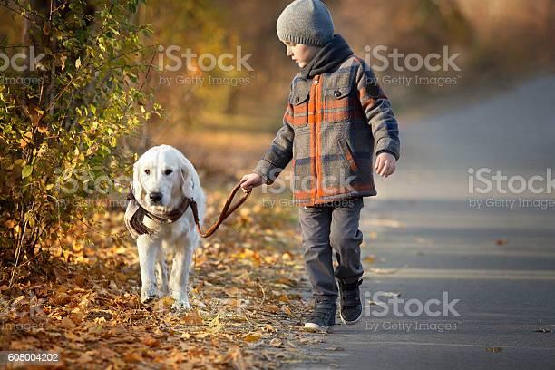Autumn walk with pet picture id608004202?b=1&k=6&m=608004202&s=612x612&h=f1vxpbwi7 fqasav2edqnzx8gwzt1tj8urfky6nruqy=