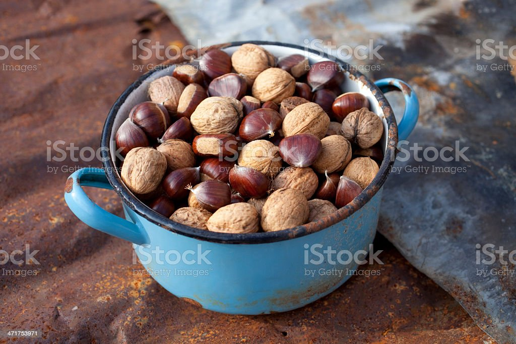 Autumn. Walnuts and chestnuts. royalty-free stock photo