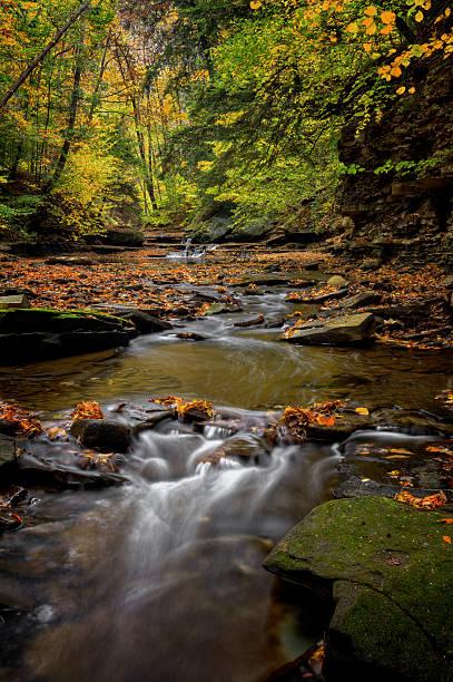 Autumn Waterfall stock photo