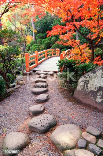 Bridge and footpath in public Japanese garden.