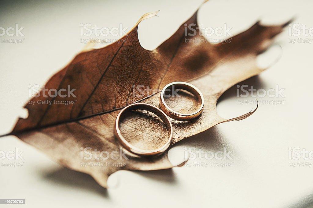 Herbst-Hochzeit – Foto