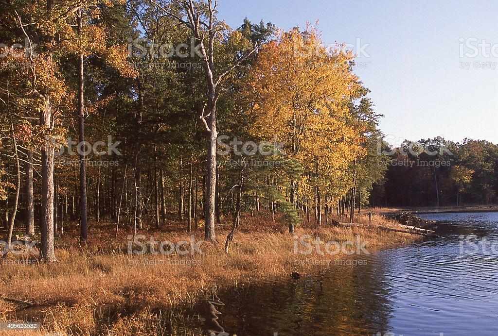 Autumn wetlands Patuxent National Wildlife Research Refuge Laurel Maryland stock photo