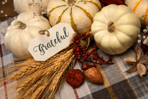 Autumn White Small pumpkins on plaid background with Baby breath flowers stock photo